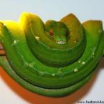 Morelia viridis, Sorong, Grüner Baumpython, Chondropython viridis, Festland Typus